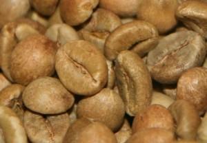 зеленый кофе робуста индия черри