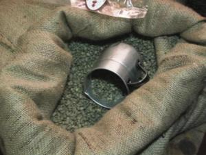 зеленый кофе в мешке